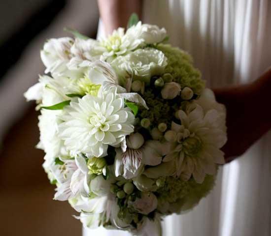bouquet-Vogliotti-Pietrini