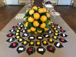 Torino Catering - Allestimento per evento di inaugurazione